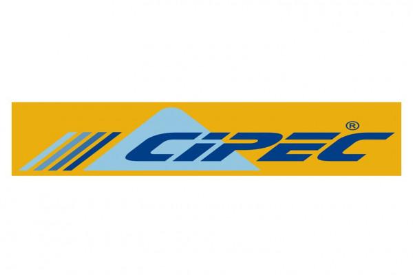 CIPEC INDUSTRIAL DE AUTOPECAS S/A