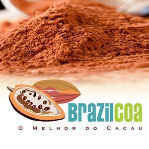 BRAZILCOA IND E COM LTDA