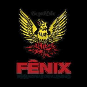FÊNIX FABRICAÇÃO DE ESQUADRIAS DE ALUMÍNIO LTDA